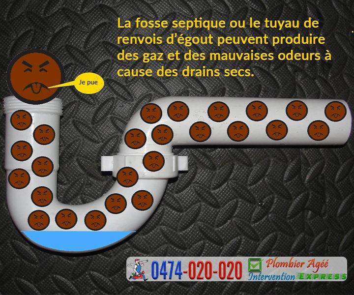 La fosse septique ou le tuyau de renvois d'égout peuvent produire des gaz et des mauvaises odeurs à cause des drains secs
